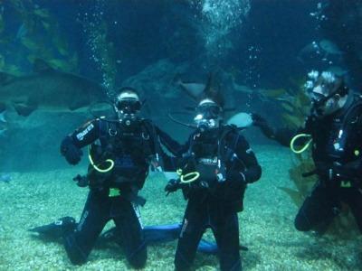 phụ kiện lặn và ống thở