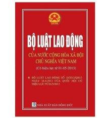 Bộ Luật Tố Tụng Dân Sự Năm 2004 Sửa Đổi, Bổ Sung Năm 2011 (Bìa Mềm)
