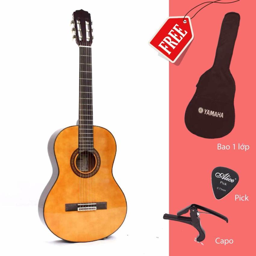Đàn Guitar Classic Aria AK20N