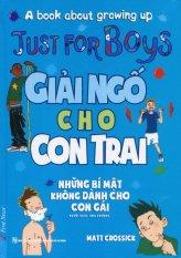 Giải Ngố Cho Con Trai - Matt Crossick,Hoa Phượng