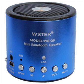 Loa Bluetooth mini Wster WS Q9
