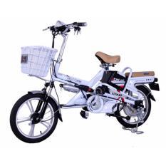 Xe đạp điện DK 18V