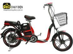 Xe đạp điện Hkbike Zinger Color 2