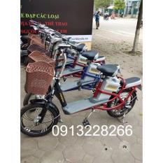 Xe đạp điện Anbico AP1505