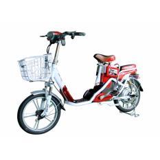 Xe đạp điện DK Bike 18X