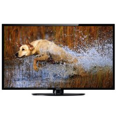 Tivi LED Darling 24inch HD - Model 24HD799 (Đen)