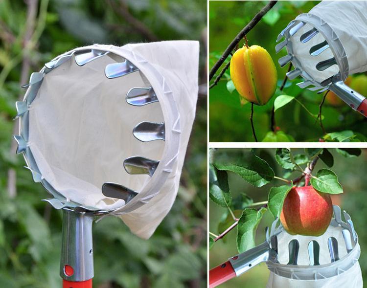 Hình ảnh đầu vợt hái quả có túi đựng, dụng cụ tiện ích làm vườn hái quả trên cao,