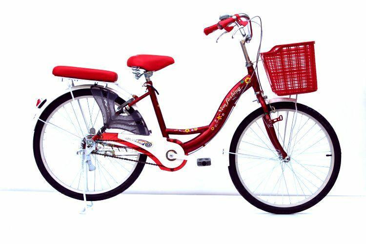 Hình ảnh Xe đạp thời trang SMN WR 24-01