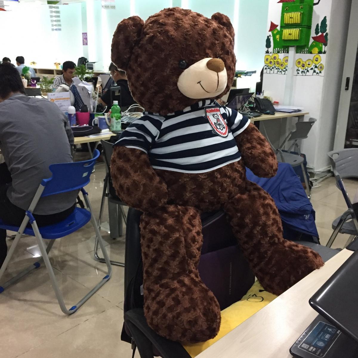 Hình ảnh Gấu Bông Teddy Khổ vải 1m cao 80cm - Quà tặng dễ thương