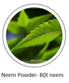 bột neem.png