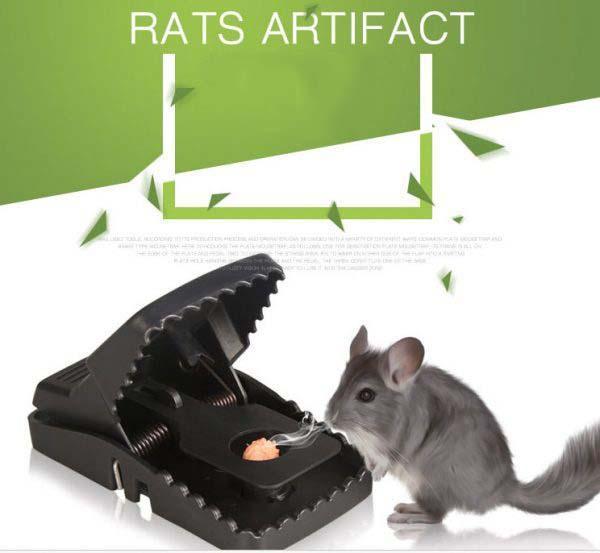 Hình ảnh Dụng cụ bắt chuột (kẹp bẫy chuột)