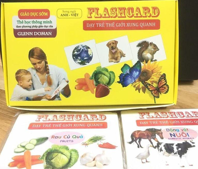 Hình ảnh Bộ thẻ học thông minh Flash Card cỡ to 14 chủ đề (280 thẻ) cho bé theo phương pháp giáo dục sớm Glenn Doman