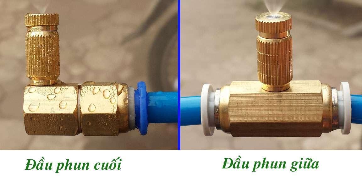 dau-phun5.jpg