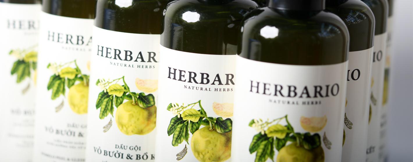 Dầu gội bưởi bồ kết Herbario