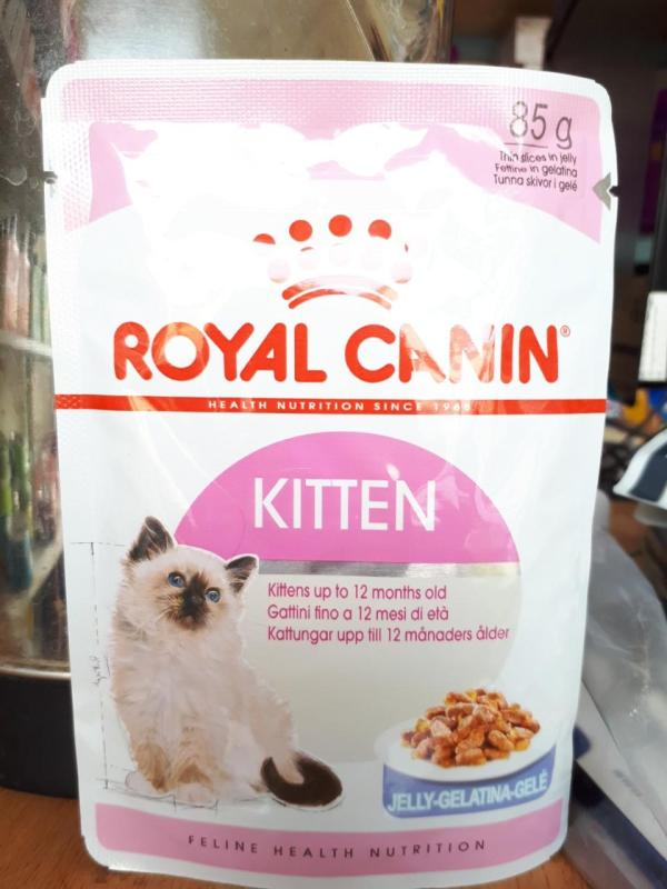 pate mèo con royal canin 85g