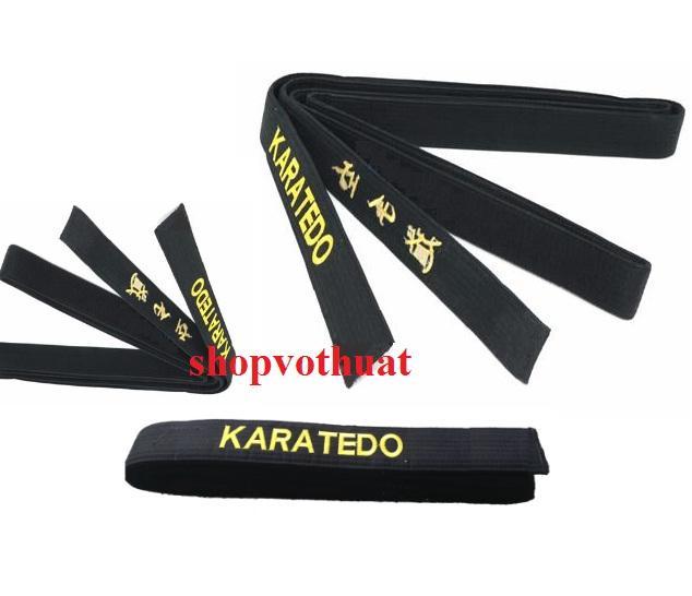 Hình ảnh Đai đen Karate