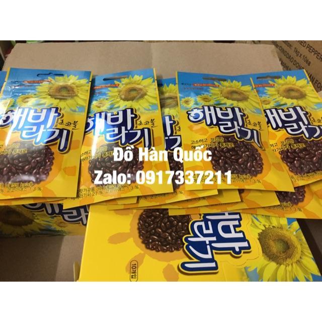 Hình ảnh Hướng dương phủ sô-cô-la Hàn Quốc