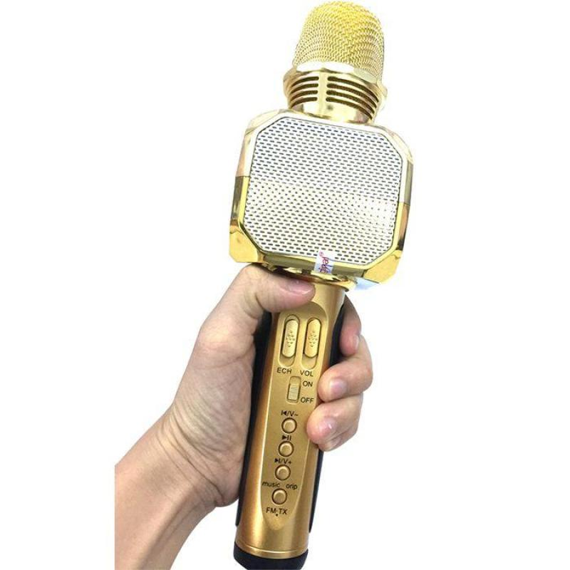 Micro kèm loa Bluetooth Karaoke SD-10 (new)