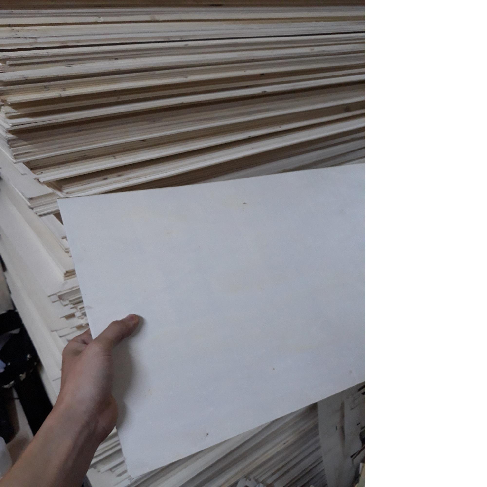 Mua Gỗ diy gỗ trắng 2 mặt 2 tấm 300x600x3mm