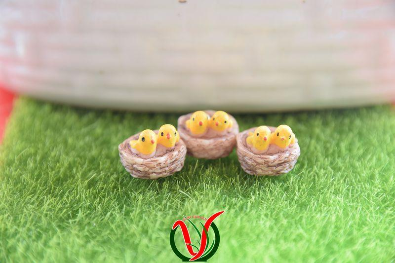 Hình ảnh Phụ kiện trang trí tiểu cảnh - Tổ chim mini, Phụ kiện terrarium, phu kien terrarium