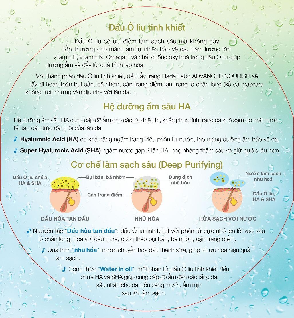 HDLB CO - 3.jpg
