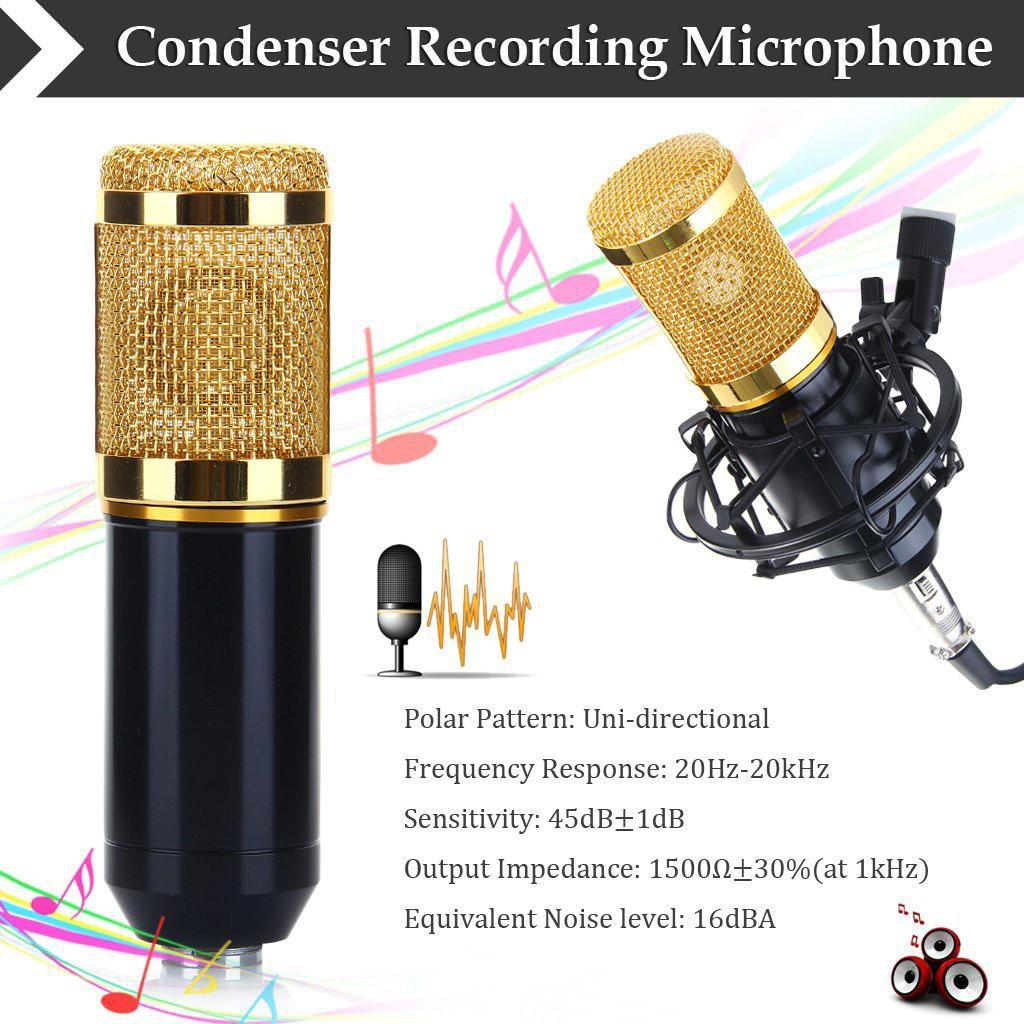 micro-karaoke-thu-am-bm-850-1m4G3-eynNvD_simg_e39c2d_1024x1024_max.jpg