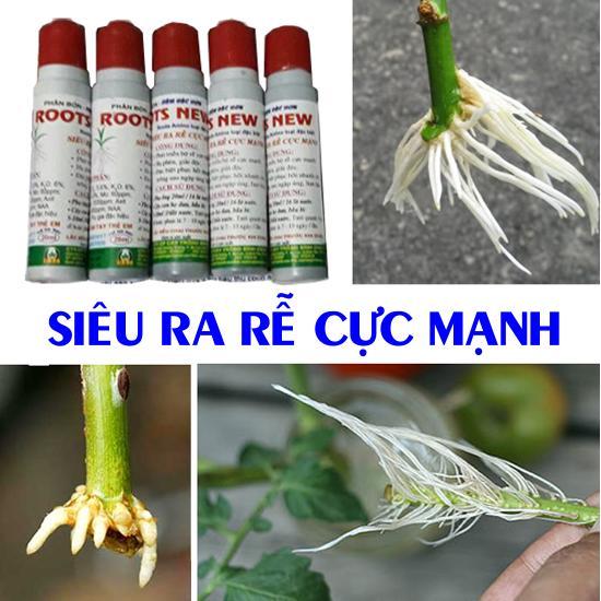 Hình ảnh Bộ 5 chai Siêu ra rễ Cực mạnh (20ml)