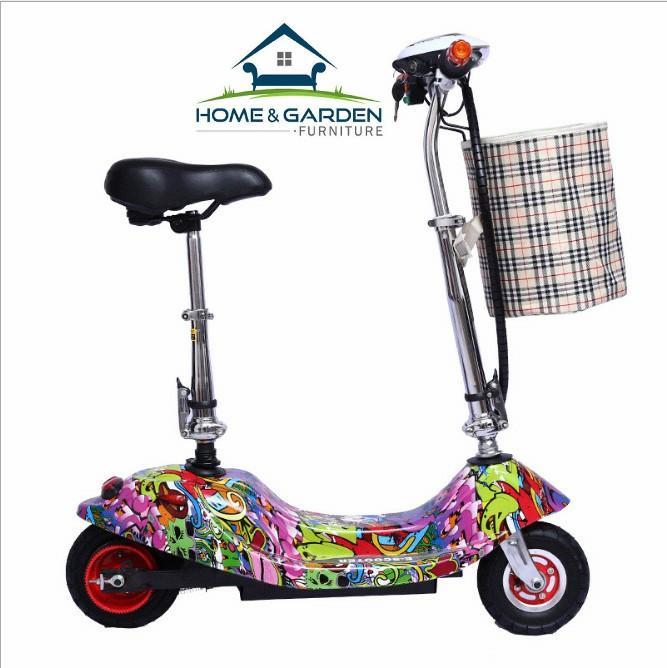 Xe scooter điện tải trọng 120kg 24V (có giỏ xách) Sun Flower