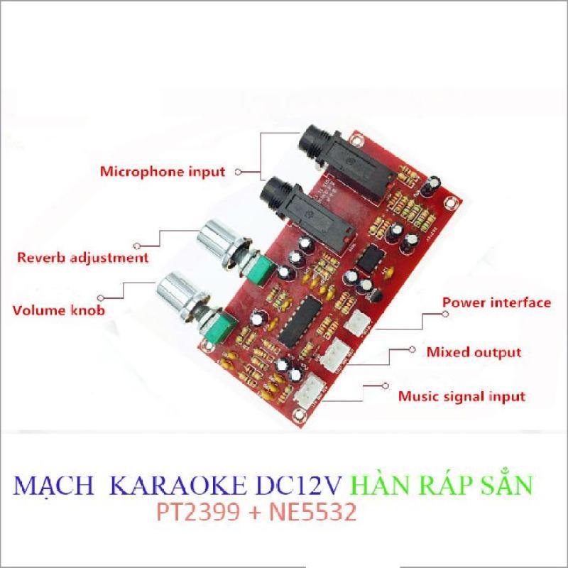 Mạch Karaoke mạch micro - HÀN RÁP SẲN  PT2399 + NE5532 12VDC