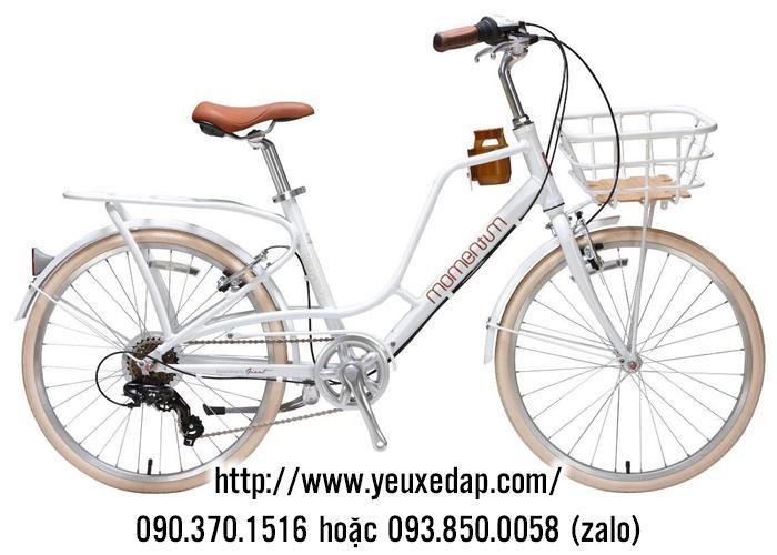 Xe đạp Giant 2019 iNeed Latte 24