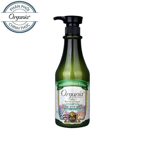 Bán Mua Dầu Gội Chống Rụng Collagen Organia Marine Collagen Shampoo 750G Trong Hồ Chí Minh