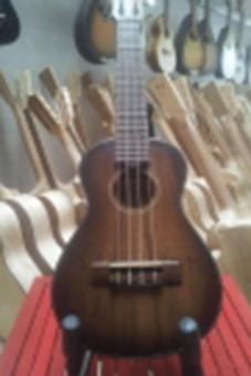 Đàn Ukulele Concert MD700-04