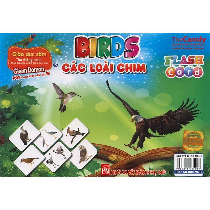 Mua Flashcard Birds - Các loài chim