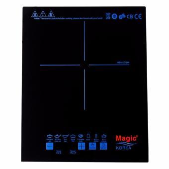 Bếp Điện Từ Magic A46