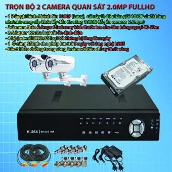 Bộ 2 camera AHD 1.3Mp gắn ngoài trời/nhà xưởng - Hàng OEM + Tặng 1năm tên miền