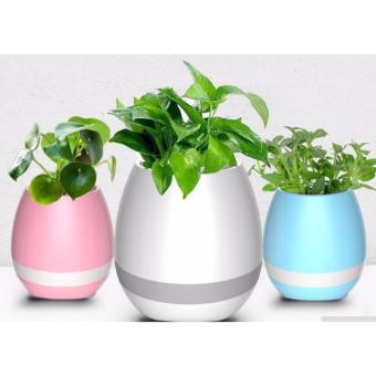 Loa Bluetooth V3.1 kiêm chậu trồng cây kèm đèn Led