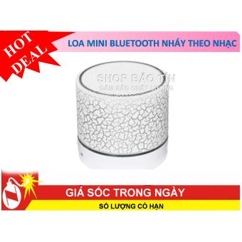 loa mini bluetooth di động 600 HD