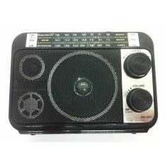 Máy nghe nhạc đa năng USB/Thẻ nhớ/FM SW-Q6U