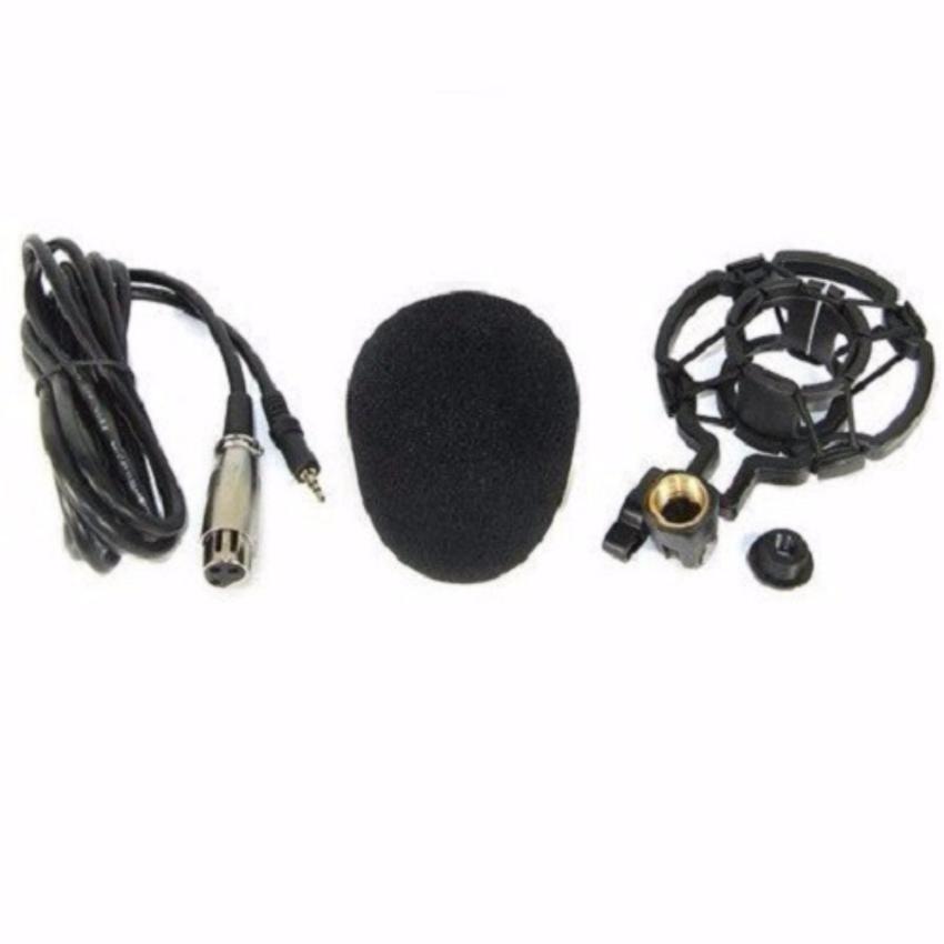 Hình ảnh Micro Thu Âm BM800 (Xanh)