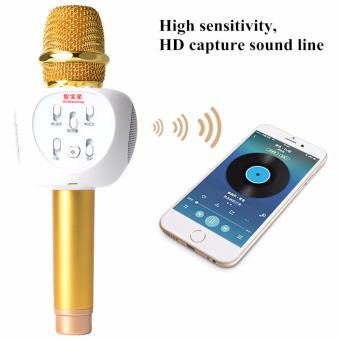 Microphone Karaoke Loa Bluetooth ZBX-66 lọc tạp âm cục chuẩn