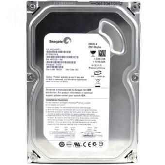 Ổ cứng Seagate HDD 250GB (Bạc)