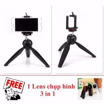 Tripod mini cho điện thoại và máy ảnh YT228 (Đen) + Tặng 1 Lenscamera 3 in 1 - 8409191 , OE680ELAA7P2J0VNAMZ-14456601 , 224_OE680ELAA7P2J0VNAMZ-14456601 , 100000 , Tripod-mini-cho-dien-thoai-va-may-anh-YT228-Den-Tang-1-Lenscamera-3-in-1-224_OE680ELAA7P2J0VNAMZ-14456601 , lazada.vn , Tripod mini cho điện thoại và máy ảnh YT228 (
