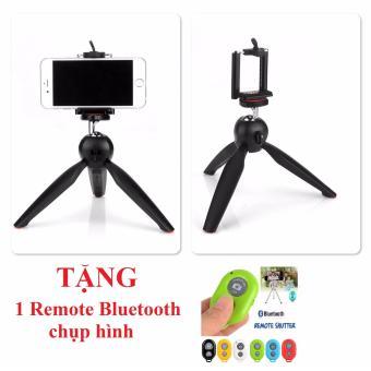 Tripod mini cho điện thoại và máy ảnh YT228 (Đen) + Tặng 1 Remote Bluetooth - 8379928 , OE680ELAA35R4GVNAMZ-5514403 , 224_OE680ELAA35R4GVNAMZ-5514403 , 150000 , Tripod-mini-cho-dien-thoai-va-may-anh-YT228-Den-Tang-1-Remote-Bluetooth-224_OE680ELAA35R4GVNAMZ-5514403 , lazada.vn , Tripod mini cho điện thoại và máy ảnh YT228 (Đen)
