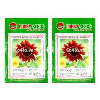 Bộ 2 gói Hạt giống hoa Hướng dương đỏ (Lucky)