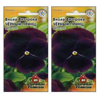 Bộ 2 gói Hạt giống Hoa viola tím