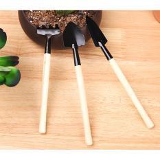 Bộ 3 dụng cụ làm vườn mini - Smart Choice