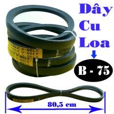 bộ đôi dây cu loa B75