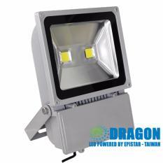 Đèn led Pha chiếu sáng công nghiệp (Flood Light) - 100W(Bạc)