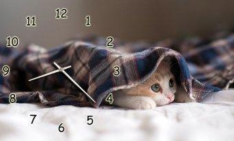 Đồng hồ để bàn Chú mèo lười Suemall DB140703