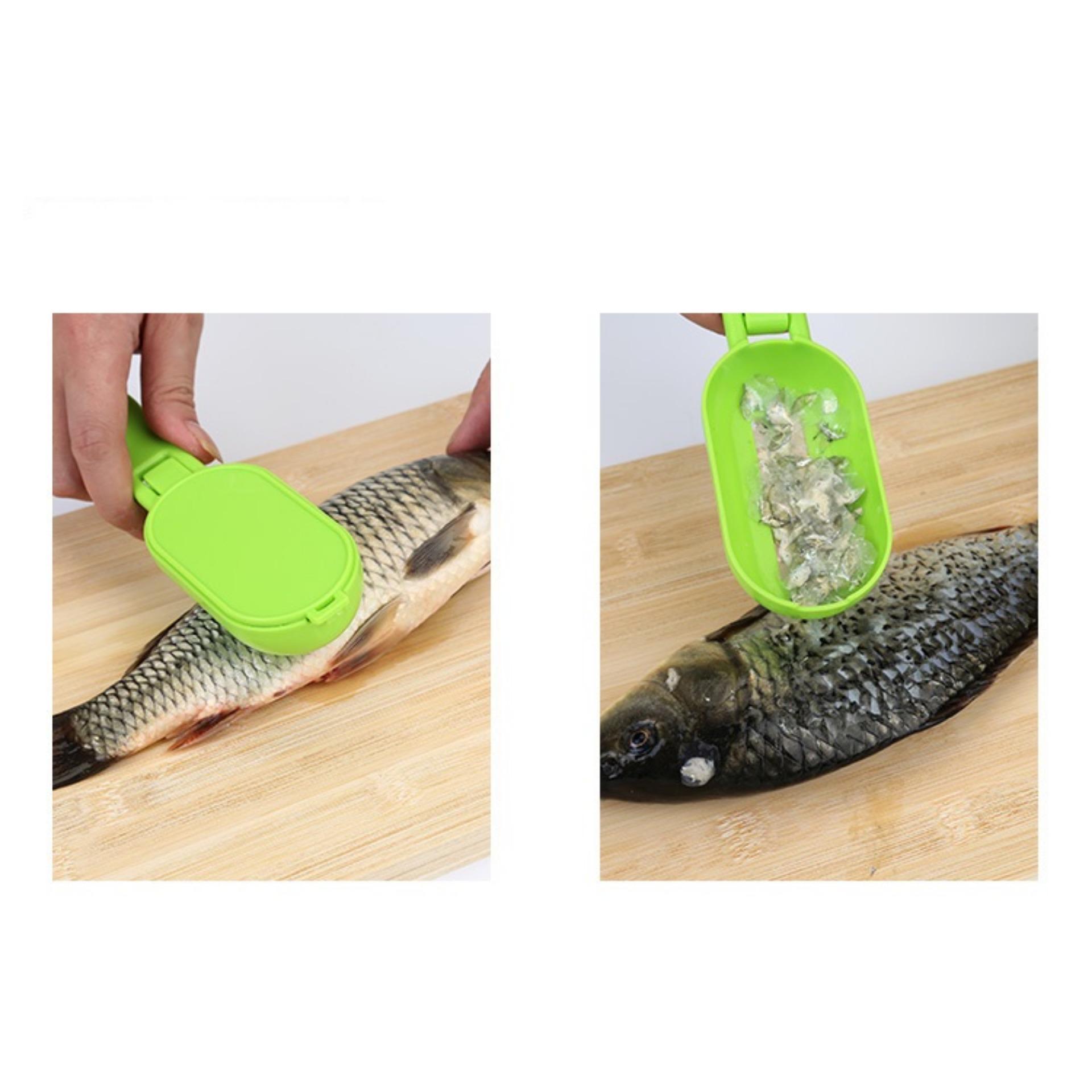 Dụng cụ đánh vảy cá tay cầm nhựa LÀM ĐẸP